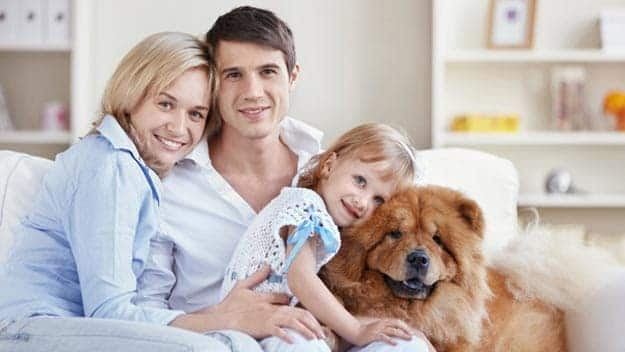 Wills & Trusts dog-young-family Direct Wills Market Harborough